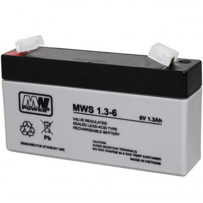 MWS-1.3-6
